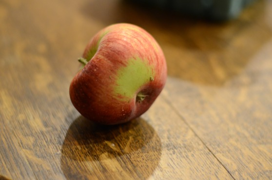 My sister-in-law Maggie brought me back a ton of apples from picking this year, and they were all beautiful except for this one!